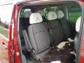 7+1  seater MB Vito